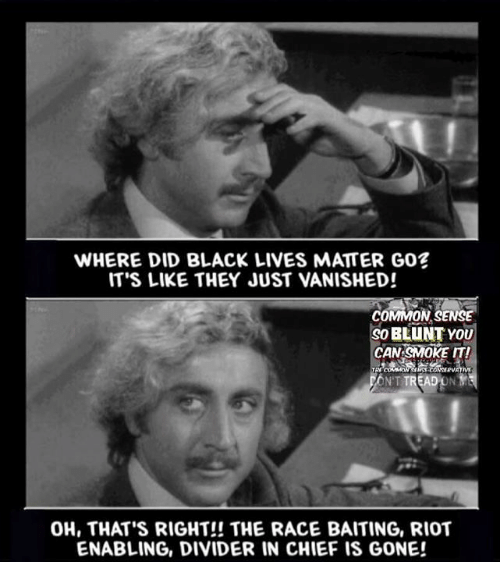 Black Lives Matter, Memes, and Riot: WHERE DID BLACK LIVES MATTER GOE  IT'S LIKE THEY JUST VANISHED!  COMMON SENSE  BLUNT YOU  90 CAN SMOKE IT!  EADONY  NT  OH, THAT'S RIGHT!! THE RACE BAITING, RIOT  ENABLING, DIVIDER IN CHIEF IS GONE!