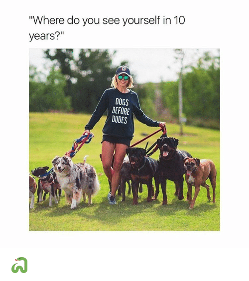 "Dogs, Dude, and Girl Memes: ""Where do you see yourself in 10  years?""  DOGS  BEFORE  DUDES 🐍"
