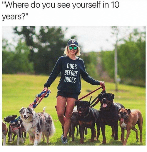 "Dank, Dogs, and Dude: ""Where do you see yourself in 10  years?""  DOGS  BEFORE  DUDES"