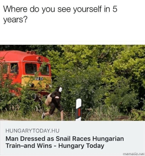races: Where do you see yourself in 5  years?  HUNGARYTODAY HU  Man Dressed as Snail Races Hungarian  Train-and Wins Hungary Today