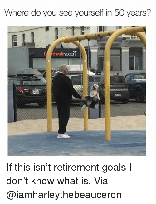 Goals, Memes, and What Is: Where do you see yourself in 50 years? If this isn't retirement goals I don't know what is. Via @iamharleythebeauceron