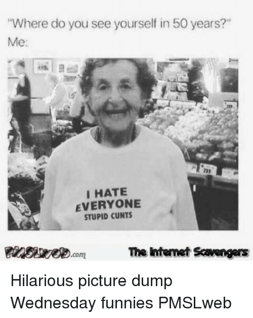 """funnies: Where do you see yourself in 50 years?""""  Me:  233  IHATE  EVERYONE  STUPID CUNTS  Pinsevecom The intenet Scavengers <p>Hilarious picture dump  Wednesday funnies  PMSLweb </p>"""
