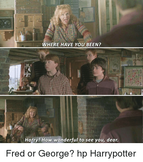 Memes, 🤖, and Fred: WHERE HAVE YOU BEEN?  Harry How wonderful to see you, dear. Fred or George? hp Harrypotter