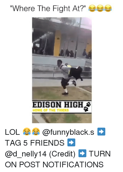"Friends, Lol, and Edison: Where The Fight At?""  EDISON HIGH  HOME OF THE TIGERS LOL 😂😂 @funnyblack.s ➡️ TAG 5 FRIENDS ➡️ @d_nelly14 (Credit) ➡️ TURN ON POST NOTIFICATIONS"