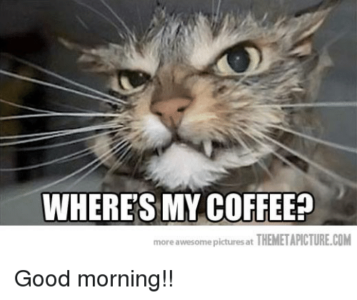 Angry Good Morning Meme : Where s my coffee more awesome pictures at