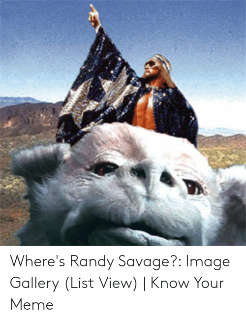 Wheres Randy: Where's Randy Savage?: Image Gallery (List View) | Know Your Meme