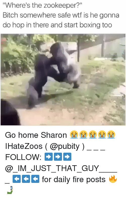 "Bitch, Boxing, and Fire: Where's the zookeeper?""  Bitch somewhere safe wtf is he gonna  do hop in there and start boxing too Go home Sharon 😭😭😭😭😭 IHateZoos ( @pubity ) _ _ _ FOLLOW: ➡➡➡@_IM_JUST_THAT_GUY_____ ⬅⬅⬅ for daily fire posts 🔥🤳🏼"