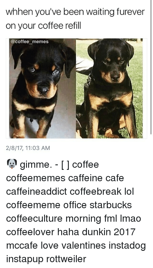Coffee Meme: whhen you've been waiting furever  on your coffee refill  @coffee memes  2/8/17, 11:03 AM 🐶 gimme. - [ ] coffee coffeememes caffeine cafe caffeineaddict coffeebreak lol coffeememe office starbucks coffeeculture morning fml lmao coffeelover haha dunkin 2017 mccafe love valentines instadog instapup rottweiler