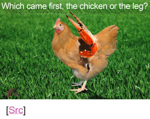 """top ten: Which came first, the chicken or the leg? <p>[<a href=""""https://www.reddit.com/r/surrealmemes/comments/7yl37d/top_ten_facts_about_the_ostrich/"""">Src</a>]</p>"""