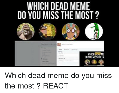 Memes, 🤖, and Missed: WHICH DEAD MEME  DO YOU MISS THE MOST  WHICH ME  DO YOU MISSTHEM Which dead meme do you miss the most ? REACT !