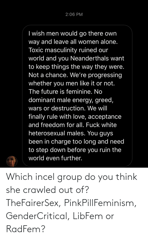 Girl Memes: Which incel group do you think she crawled out of? TheFairerSex, PinkPillFeminism, GenderCritical, LibFem or RadFem?