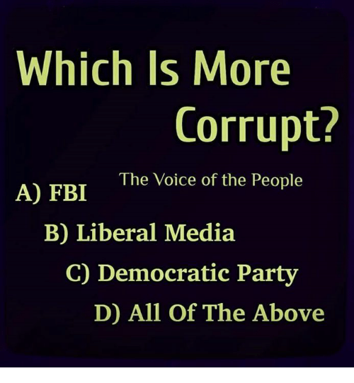 Democratic Party: Which Is More  Corrupt?  The Voice of the People  A) FBI  B) Liberal Media  C) Democratic Party  D) All Of The Above
