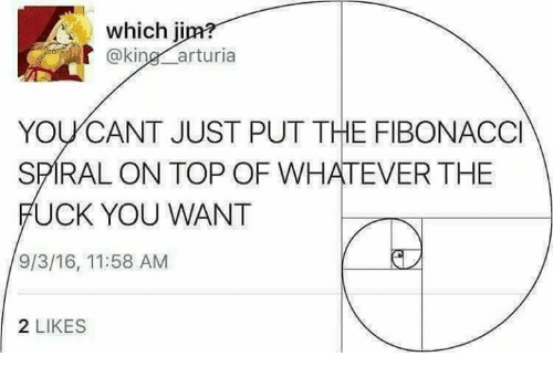 spirals: which ji  @kin  arturia  YOU CANT JUST PUT THE FIBONACCI  SPIRAL ON TOP OF WHATEVER THE  FUCK YOU WANT  9/3/16, 11:58 AM  2 LIKES