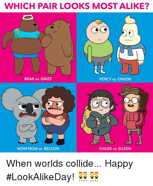 nom noms: WHICH PAIR LOOKS MOST ALIKE?  BEAR vs. GRIZZ  PERCY vs. ONION  CHLOE vs. EILEEN  NOM NOM vs. BELSON When worlds collide... Happy #LookAlikeDay! 👯👯