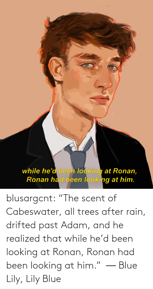 """lily: while he'd been looking at Ronan,  Ronan had been looking at him. blusargcnt:  """"The scent of Cabeswater, all trees after rain, drifted past Adam, and he realized that while he'd been looking at Ronan, Ronan had been looking at him."""" ― Blue Lily, Lily Blue"""