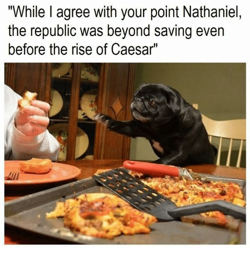 """Nathaniel: """"While I agree with your point Nathaniel,  the republic was beyond saving even  before the rise of Caesar"""""""