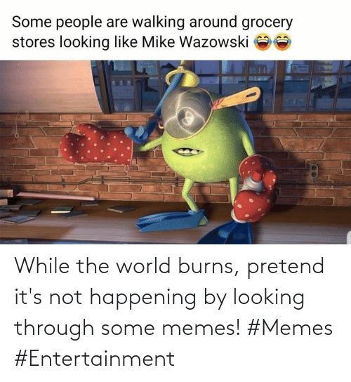 happening: While the world burns, pretend it's not happening by looking through some memes! #Memes #Entertainment