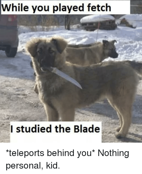 nothing personal: While you played fetch  Istudied the Blade *teleports behind you* Nothing personal, kid.