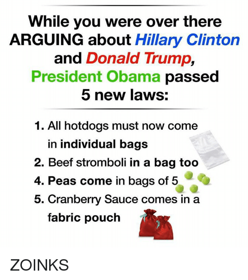 zoink: While you were over there  ARGUING about Hillary Clinton  and Donald Trump  President Obama passed  5 new laws:  1. All hotdogs must now come  in individual bags  2. Beef stromboli in a bag too  4. Peas come in bags of 5  5. Cranberry Sauce comes in a  fabric pouch ZOINKS