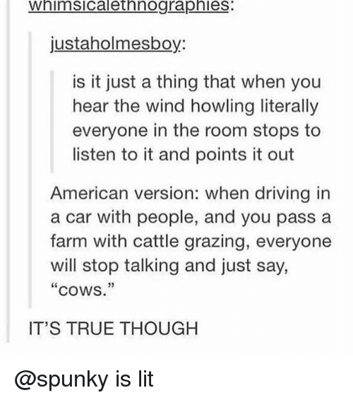 """Grazing: Whimsicalethnographies:  justaholmesboy:  is it just a thing that when you  hear the wind howling literally  everyone in the room stops to  listen to it and points it out  American version: when driving in  a car with people, and you pass a  farm with cattle grazing, everyone  will stop talking and just say,  """"cows.""""  IT'S TRUE THOUGH @spunky is lit"""