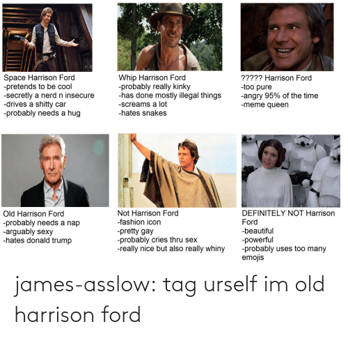 meme: Whip Harrison Ford  -probably really kinky  -has done mostly illegal things  Space Harrison Ford  -pretends to be cool  -secretly a nerd n insecure  -drives a shitty car  -probably needs a hug  ????? Harrison Ford  -too pure  -angry 95% of the time  -meme queen  -screams a lot  -hates snakes  Old Harrison Ford  -probably needs a nap  -arguably sexy  -hates donald trump  DEFINITELY NOT Harrison  Not Harrison Ford  -fashion icon  Ford  -pretty gay  -probably cries thru sex  -really nice but also really whiny  -beautiful  -powerful  -probably uses too many  emojis james-asslow:  tag urself im old harrison ford