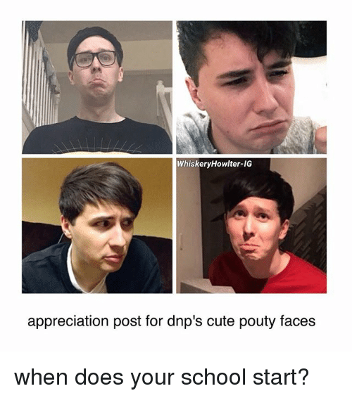 Cute, Memes, and School: WhiskeryHowlter-IG  appreciation post for dnp's cute pouty faces when does your school start?