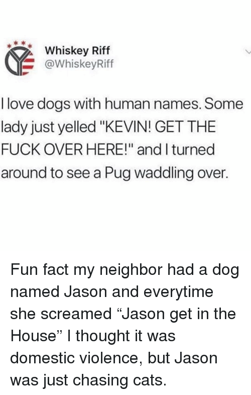 "Domestic Violence: Whiskey Riff  @WhiskeyRiff  I love dogs with human names. Some  lady just yelled ""KEVIN! GET THE  FUCK OVER HERE!"" and I turned  around to see a Pug waddling over. Fun fact my neighbor had a dog named Jason and everytime she screamed ""Jason get in the House"" I thought it was domestic violence, but Jason was just chasing cats."