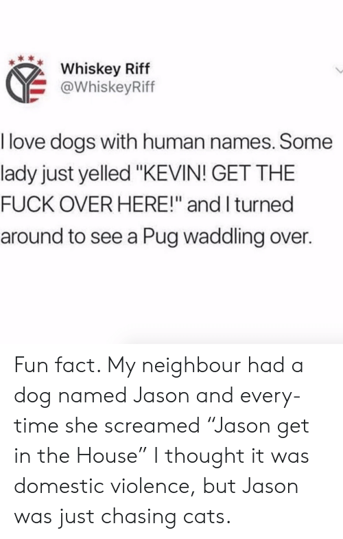 "Domestic Violence: Whiskey Riff  @WhiskeyRiff  I love dogs with human names. Some  lady just yelled ""KEVIN! GET THE  FUCK OVER HERE!"" and I turned  around to see a Pug waddling over. Fun fact. My neighbour had a dog named Jason and every-time she screamed ""Jason get in the House"" I thought it was domestic violence, but Jason was just chasing cats."