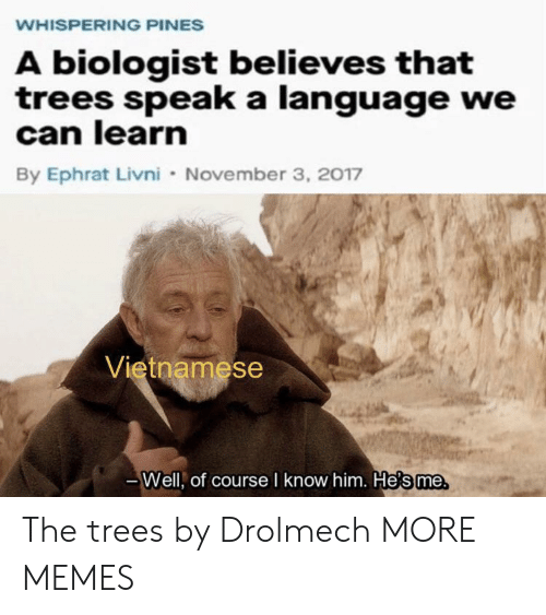 Whispering: WHISPERING PINES  A biologist believes that  trees speak a language we  can learn  By Ephrat Livni November 3, 2017  Vietnamese  Well, of course I know him. He's me The trees by Drolmech MORE MEMES