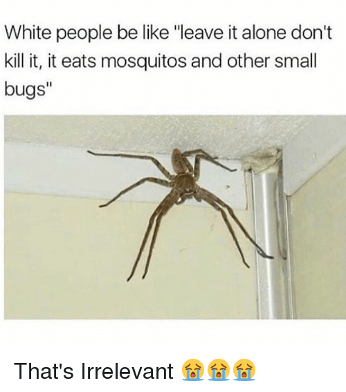 "Being Alone, Be Like, and Memes: White people be like ""leave it alone don't  kill it, it eats mosquitos and other small  bugs"" That's Irrelevant 😭😭😭"