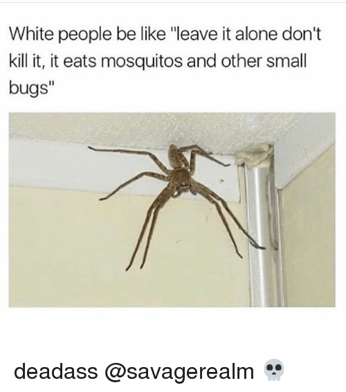 "Being Alone, Be Like, and Memes: White people be like ""leave it alone don't  kill it, it eats mosquitos and other small  bugs"" deadass @savagerealm 💀"