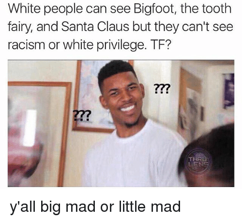 Bigfoot, Memes, and Racism: White people can see Bigfoot, the tooth  fairy, and Santa Claus but they can't see  racism or white privilege. TF?  THRU y'all big mad or little mad