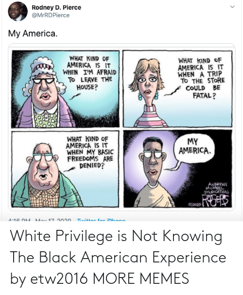 privilege: White Privilege is Not Knowing The Black American Experience by etw2016 MORE MEMES