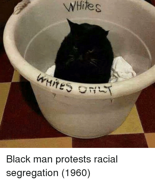 Protests: WHite s Black man protests racial segregation (1960)
