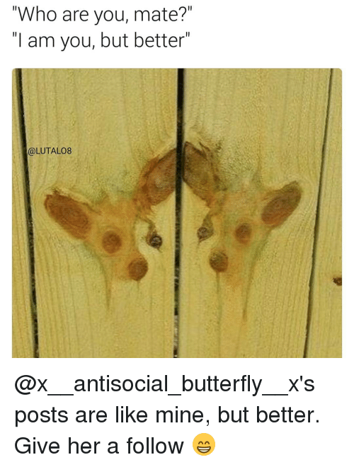"""Memes, 🤖, and Her: """"Who are you, mate?""""  I am you, but better  LUTALO8 @x__antisocial_butterfly__x's posts are like mine, but better. Give her a follow 😁"""