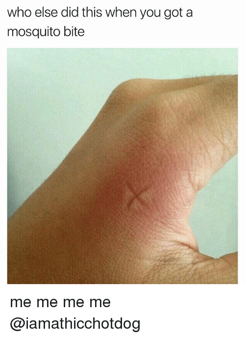 mosquito bites: who else did this when you got a  mosquito bite me me me me @iamathicchotdog