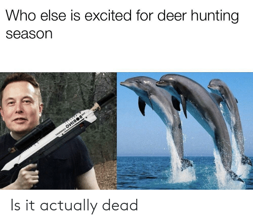 Deer Hunting: Who else is excited for deer hunting  Season Is it actually dead
