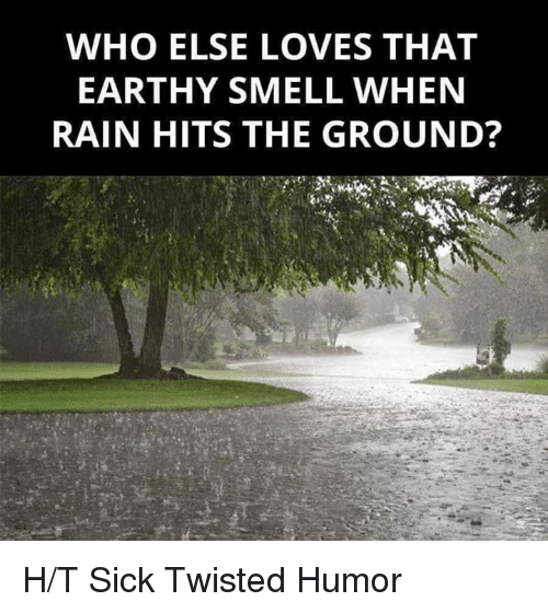 Sick Twisted Humor: WHO ELSE LOVES THAT  EARTHY SMELL WHEN  RAIN HITS THE GROUND? H/T Sick Twisted Humor