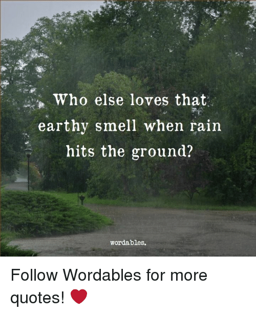 Smell, Quotes, and Rain: *Who else loves that  earthy smell when rain  hits the ground?  wordables. Follow Wordables for more quotes! ❤️