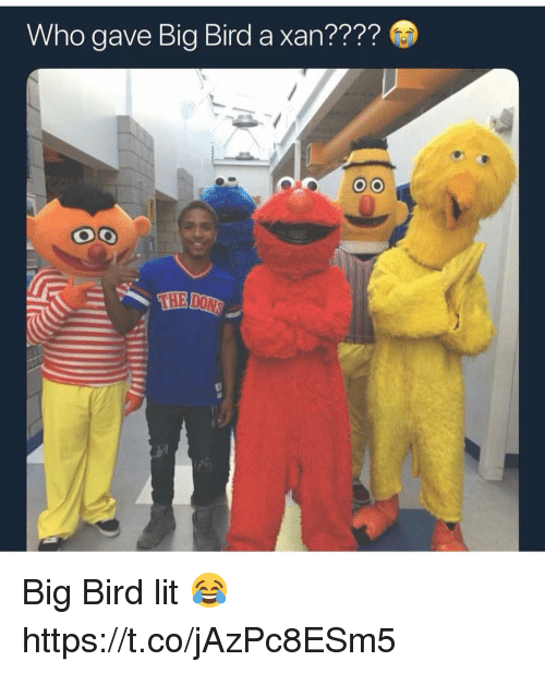 Lit, Big Bird, and Who: Who gave Big Bird a xan????  THE Big Bird lit 😂 https://t.co/jAzPc8ESm5