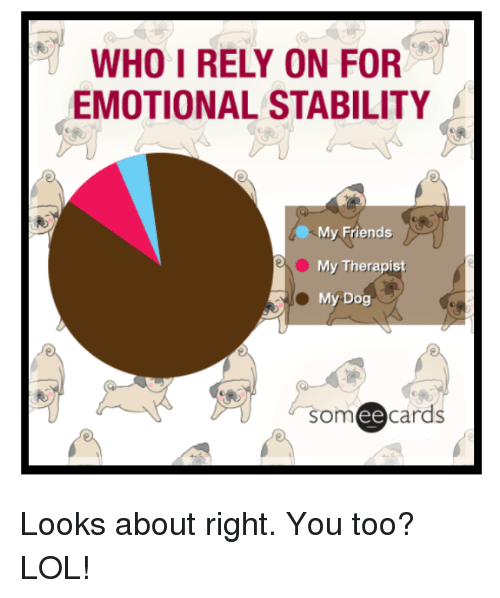Ee Cards: WHO I RELY ON FOR  EMOTIONAL STABILITY  My Friends  My Therapist  My Dog  som ee  cards Looks about right. You too? LOL!
