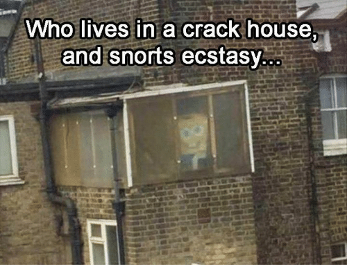 Memes, House, And 🤖: Who Lives In A Crack House. And Snorts Ecstasy