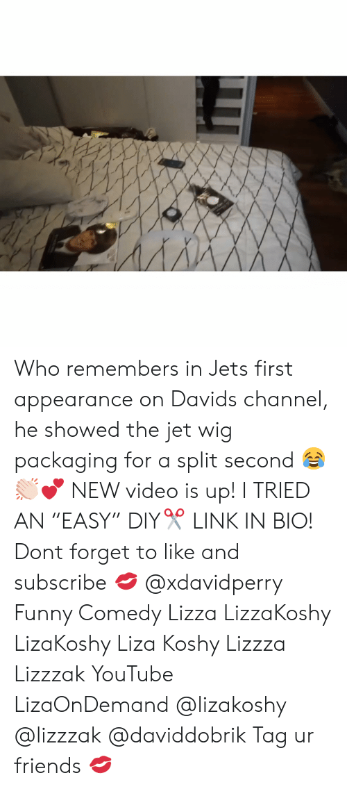 "Liza Koshy: Who remembers in Jets first appearance on Davids channel, he showed the jet wig packaging for a split second 😂👏🏻💕 NEW video is up! I TRIED AN ""EASY"" DIY✂️ LINK IN BIO! Dont forget to like and subscribe 💋 @xdavidperry Funny Comedy Lizza LizzaKoshy LizaKoshy Liza Koshy Lizzza Lizzzak YouTube LizaOnDemand @lizakoshy @lizzzak @daviddobrik Tag ur friends 💋"
