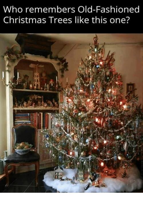 Christmas, Dank, and Trees: Who remembers Old-Fashioned  Christmas Trees like this one?