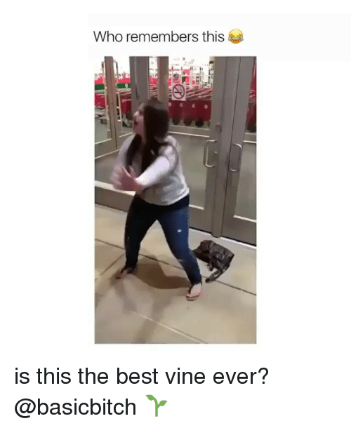Best Vine: Who remembers this is this the best vine ever? @basicbitch 🌱