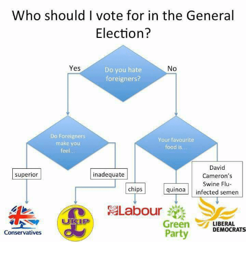 Food, Memes, and Party: Who should vote for in the General  Election?  Yes  No  Do you hate  foreigners?  Do Foreigners  Your favourite  make you  food is.  feel  David  inadequate  superior  Cameron's  Swine Flu  chips  quinoa  infected semen  Labour  Green  LIBERAL  DEMOCRATS  Party  Conservatives