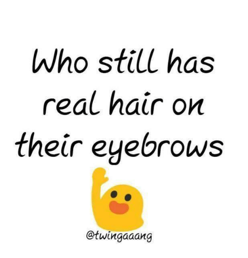 Girl Memes: Who still has  real hair on  their eyebrows  @twingaaang