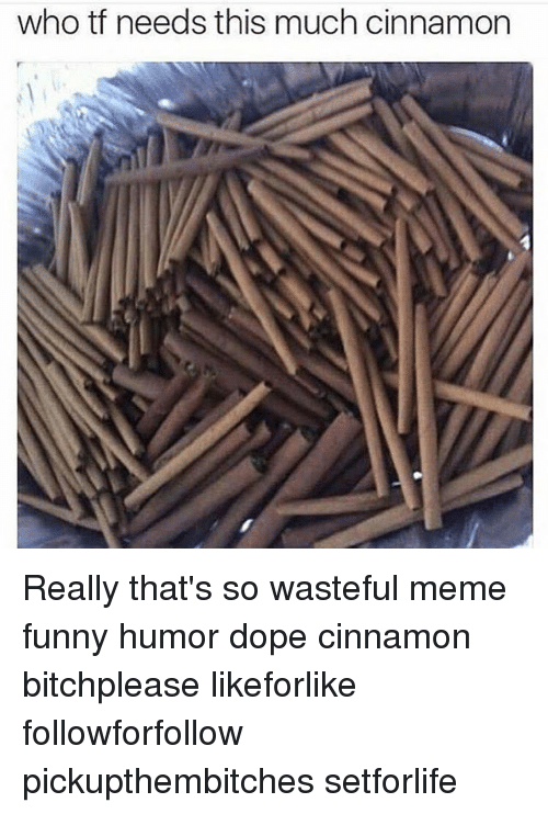 Wasted Meme: who tf needs this much cinnamon Really that's so wasteful meme funny humor dope cinnamon bitchplease likeforlike followforfollow pickupthembitches setforlife