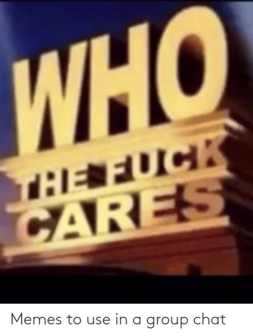 Cares: WHO  THE FUCK  CARES Memes to use in a group chat
