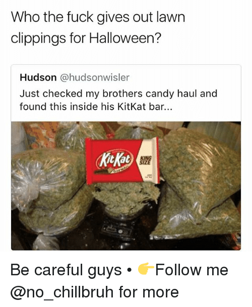 Kitkat: Who the fuck gives out lawn  clippings for Halloween?  Hudson @hudsonwisler  Just checked my brothers candy haul and  found this inside his KitKat bar.  kicKat Be careful guys • 👉Follow me @no_chillbruh for more